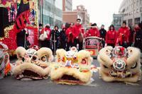 Oogster's 2011 Lunar New Year Flushing Parade PICS!